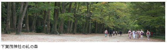 下賀茂神社の糺の森